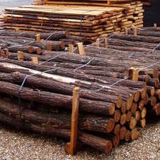 Akacie-bark-traestammer