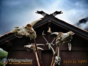 Viking Valley -tækkespån 2 (1)